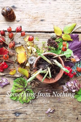Something from Nothing #5ftinftable