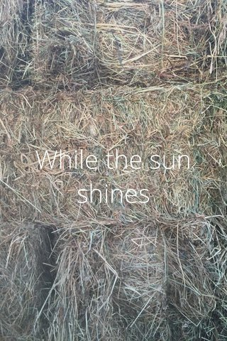 While the sun shines