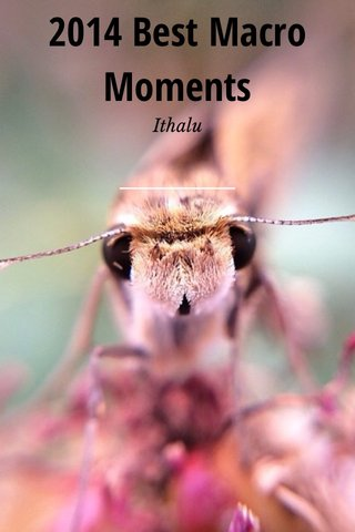 2014 Best Macro Moments Ithalu