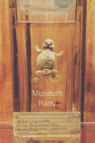 Museum Party