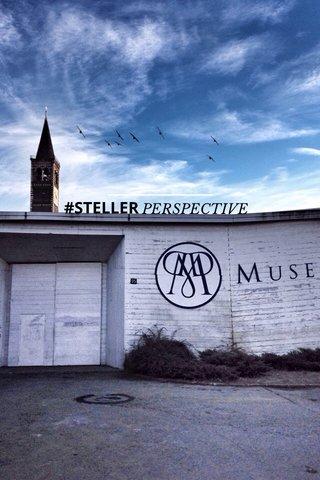#STELLER PERSPECTIVE
