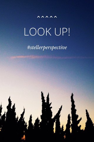 LOOK UP! ^^^^^ #stellerperspective