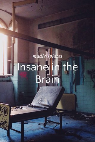 Insane in the Brain madlessplaces