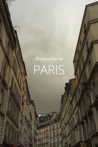 PARIS Perspective in