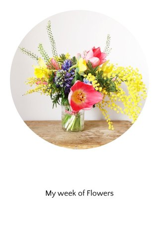 My week of Flowers
