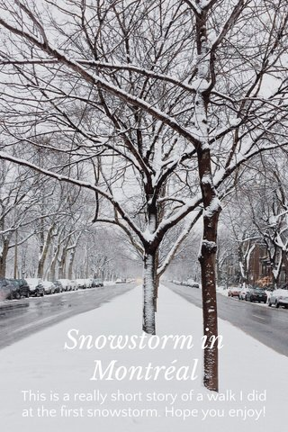 Snowstorm in Montréal This is a really short story of a walk I did at the first snowstorm. Hope you enjoy!