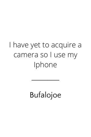 Bufalojoe I have yet to acquire a camera so I use my Iphone