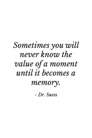 Sometimes you will never know the value of a moment until it becomes a memory. - Dr. Suess