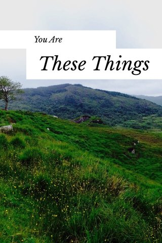 These Things You Are