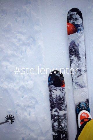 #stellerwinter