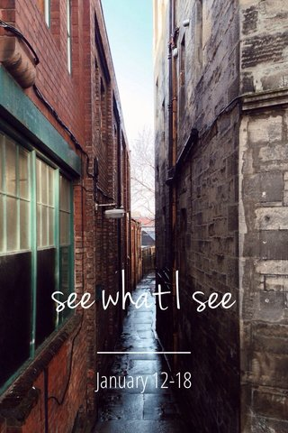 see what I see January 12-18