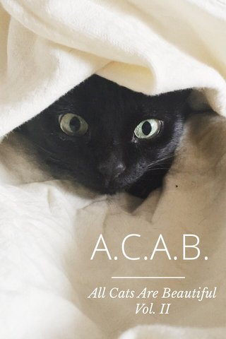 A.C.A.B. All Cats Are Beautiful Vol. II
