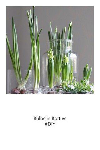 Bulbs in Bottles #DIY