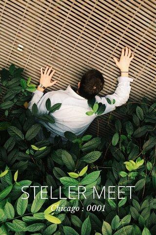 STELLER MEET Chicago : 0001