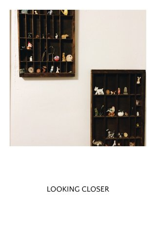 LOOKING CLOSER