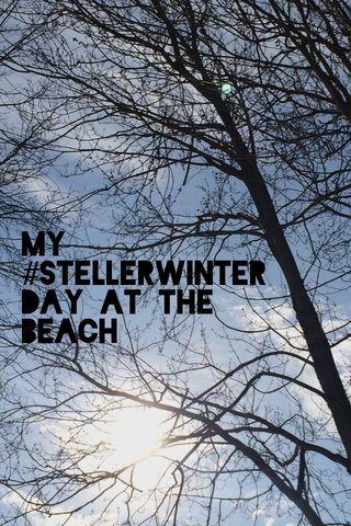 My #stellerwinter Day at the Beach