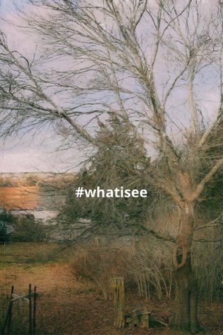 #whatisee