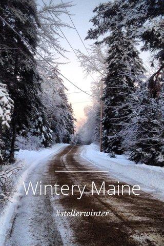 Wintery Maine #stellerwinter