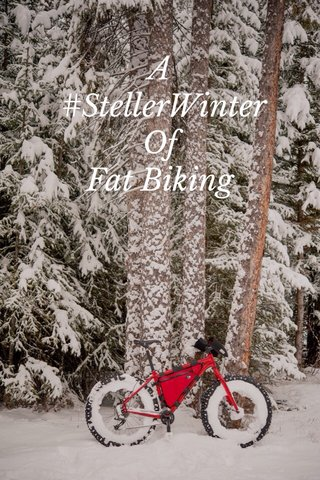 A #StellerWinter Of Fat Biking
