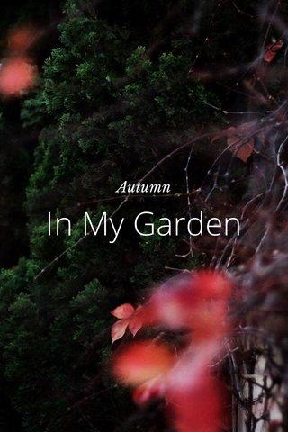 In My Garden Autumn