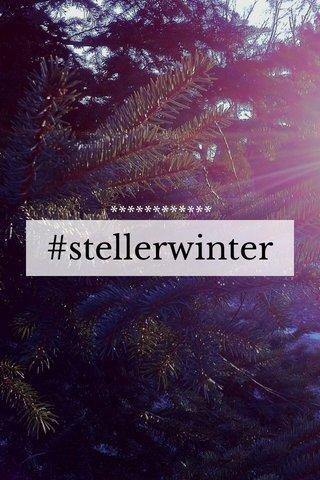 #stellerwinter ************