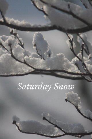 Saturday Snow
