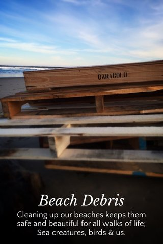 Beach Debris Cleaning up our beaches keeps them safe and beautiful for all walks of life; Sea creatures, birds & us.