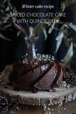 SPICED CHOCOLATE CAKE WITH QUINCE JELLY Winter cake recipe