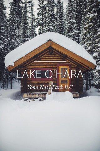 LAKE O'HARA Yoho Nat'l Park B.C