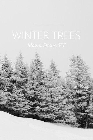 WINTER TREES Mount Stowe, VT