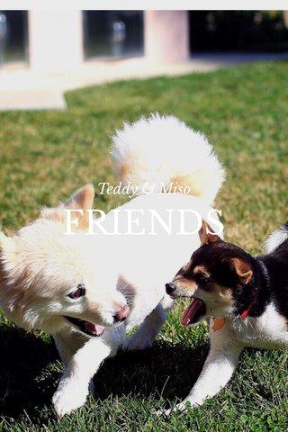 FRIENDS Teddy & Miso