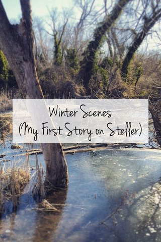 Winter Scenes (My First Story on Steller)