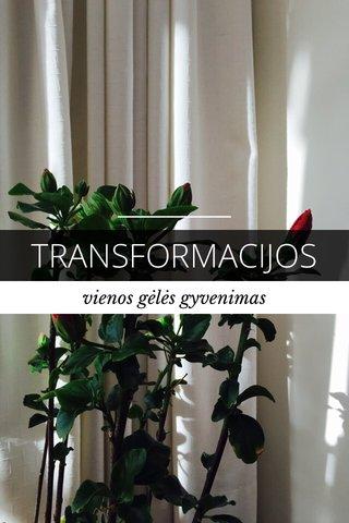 TRANSFORMACIJOS vienos gėlės gyvenimas