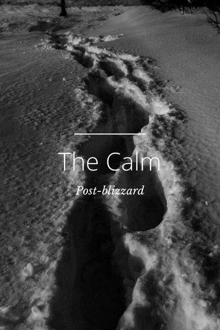 The Calm Post-blizzard