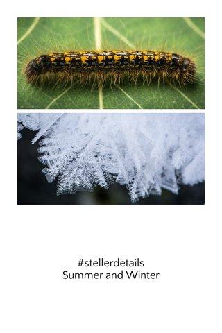 #stellerdetails Summer and Winter