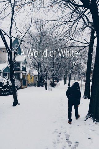 A World of White