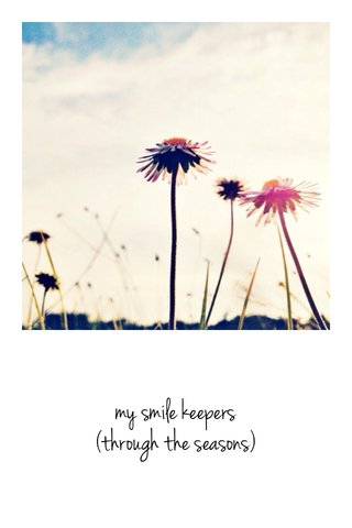 my smile keepers (through the seasons)
