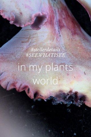 in my plants world #stellerdetails #SEEWHATISEE