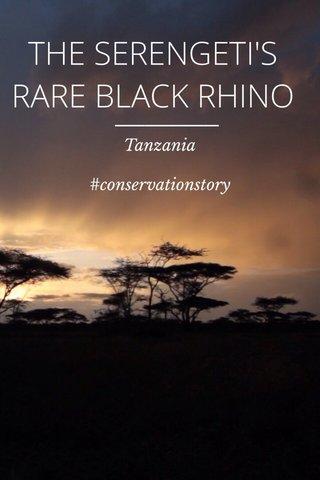 THE SERENGETI'S RARE BLACK RHINO Tanzania #conservationstory