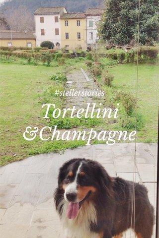 Tortellini &Champagne #stellerstories