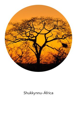 Shukkynnu-África