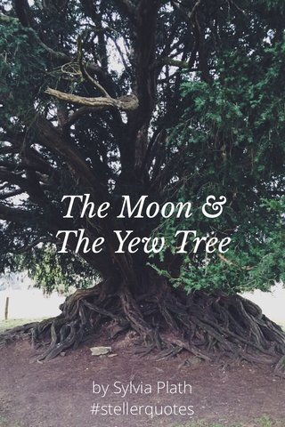 The Moon & The Yew Tree by Sylvia Plath #stellerquotes