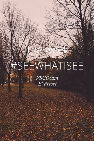 #SEEWHATISEE The week VSCOcam 'E' Preset