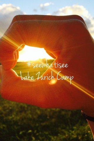 #seewhatisee Lake Zurich Camp