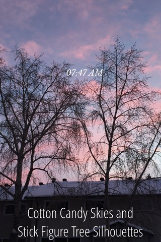 Cotton Candy Skies and Stick Figure Tree Silhouettes 07:47 AM