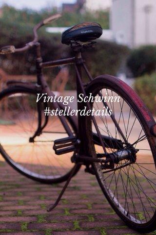 Vintage Schwinn #stellerdetails