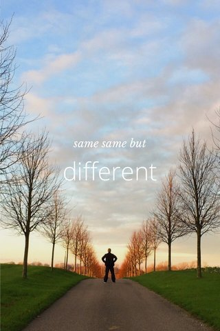 different same same but