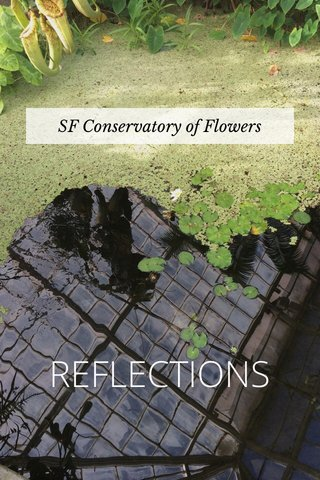 REFLECTIONS SF Conservatory of Flowers