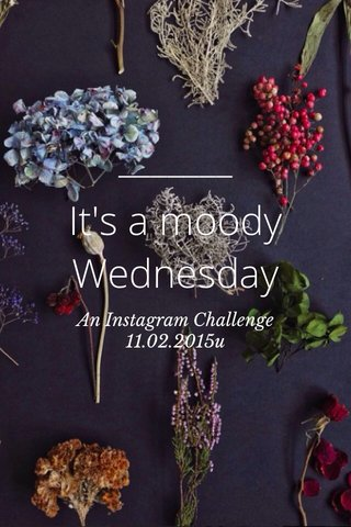 It's a moody Wednesday An Instagram Challenge 11.02.2015u