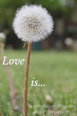Love is... (a compilation of quotes about compassion)